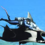 Muerte de Valerie: misterio por resolver en las Galápagos