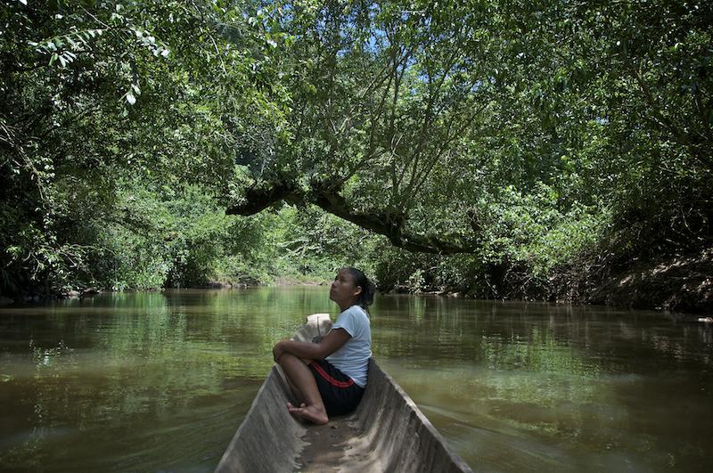 La comunidad Wao de Miwaguno es 'protectora' de una de las 'puerta' de acceso a la reserva de la biósfera del Yasuní. En medio de la explotación petrolera ellos se esfuerzan por mantener su entorno natural y su cultura ancestral.