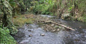 La lucha de los Tsáchilas para descontaminar sus ríos