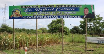 Los riesgos para la biodiversidad en la Reserva Ecológica Arenillas