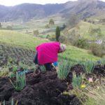 Comuneros indígenas impulsan la agroecología y el cuidado ambiental