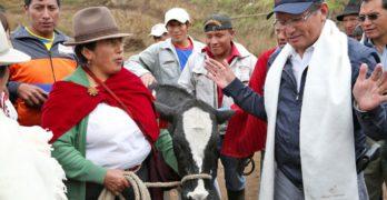Curicama, el terrateniente indígena